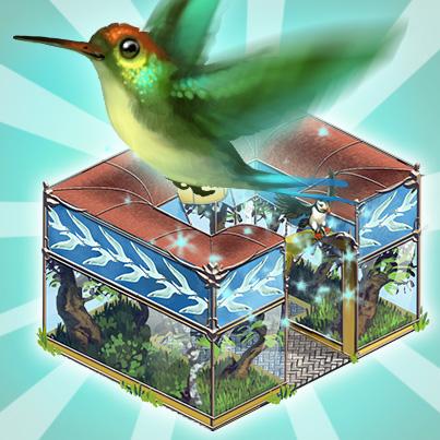 volierenhaus__kolibri